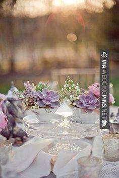 Wow! - Centros de mesa para bodas con suculentas | CHECK OUT SOME GREAT PHOTOS OF NEW Centros de Mesa Para Boda HERE AT WEDDINGPINS.NET | #CentrosdeMesaParaBoda #CentrosdeMesa #boda #weddings #centerpieces #weddingcenterpiece #vows #tradition #nontraditional #events #forweddings #iloveweddings #romance #beauty #planners #fashion #weddingphotos #weddingpictures