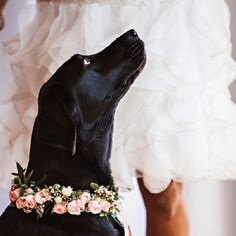 It's a Good Friday...for mint, gold & pink spring wedding inspiration!  SAGE NEEDS THIS! @Sher Ree West Olson