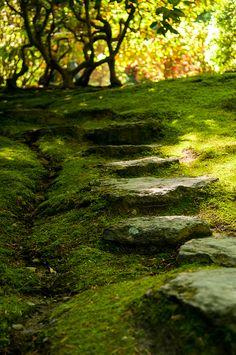 Camminamento in pietra antica.