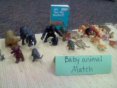 Animal Match for Science Center.  I like the idea of using a lit. picture book AND a non-fiction picture book.