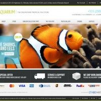 E-commerce Website designed in Magento