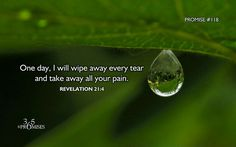 Rev.  21:4  One day, I will wipe away every tear and take away all your pain.