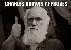 Darwin Approved