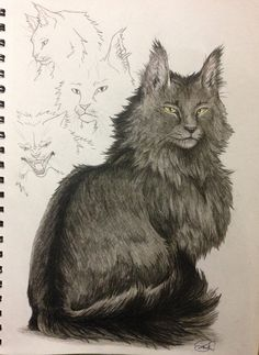Warrior Cats -- Graystripe  by SoooThisIsArt----Wow.deviantart.com on @DeviantArt