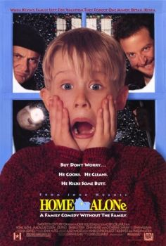 An eight-year-old boy is left home alone on Christmas, and has to defend his home against two bumbling burglars.