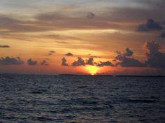 Sanibel Island Photos - Featured Images of Sanibel Island, Southwest Gulf Coast - TripAdvisor