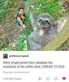Selfie sticks are redeemable... By sloth