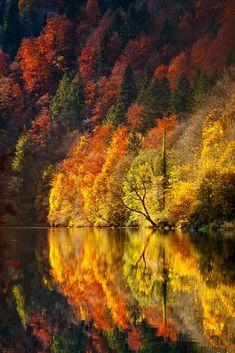 L'automne voit double.