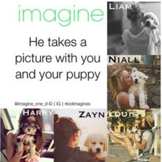 That's cute. I have actually taken a picture with my puppy like the Niall pref  haha