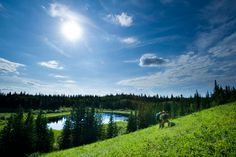 Trail Guide: 3 Best Saskatchewan Hikes