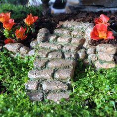 Fairy Garden Plants, Garden Terrarium, Fairy Garden Houses, Garden Stairs, Craft Corner, Colorful Garden, Miniature Fairy Gardens, Miniture Things, Garden Design