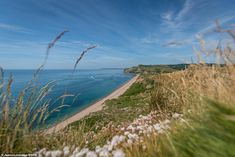 James said: 'Tourism is very important to many jobs and small businesses in Dorset. Outdoor Photography Magazine, Aerial Photography, Dorset Travel, Dorset Coast, Jurassic Coast, Holiday Accommodation, Landscape Photographers, Tourism, Turismo