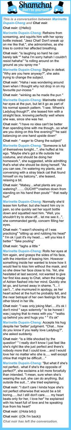 A conversation between Chat noir and Marinette Dupain-Cheng