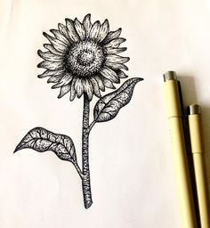 botanica✨ #wintermothtattoo #wtm #blackwork #blackart #blackink #blacktattoo #blackwork #blackworkers #blackartist #dotwork #dotworkers #dotworktattoo #pontilhismo #pontilhismotattoo #botanicaltattoo #botanicillustration #botanicaldrawing #botanical#sunflower #sunflowertattoo #sunflowerdrawing