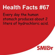 The #human stomach produces about 2 liters of hydrochloric acid... #healthfacts