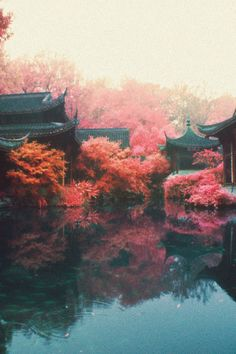 """vintagepales: """" Autumn in China """""""