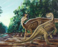 muttaburrasaurus - Google keresés