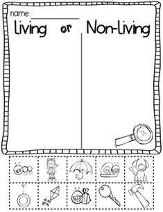 Living and Nonliving Worksheets