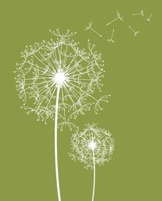 Modern Wall Decor Prints Dandelions Modern Flowers by fancyprints, $48.00