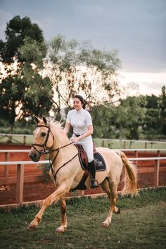 Horses, Photography, Ideas, Horse, Palomino