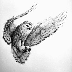 Owl Tattoo Drawings, Tatoo Art, Bird Drawings, Animal Drawings, Tattoo Owl, Owl Tattoos, Face Tattoos, Arm Tattoo, Owl Tattoo Back