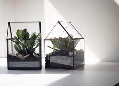 Glass Terrarium by BrumalArt