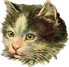 vintage kitty head scrap
