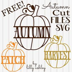 Make it Create by LillyAshley...Freebie Downloads: Freebie Split Pumpkin Cutting Files for Autumn