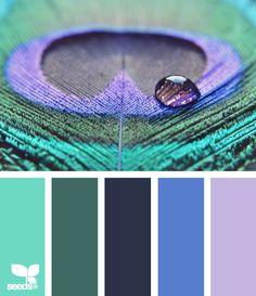 fresh hues   color inspiration: { peacock hues }