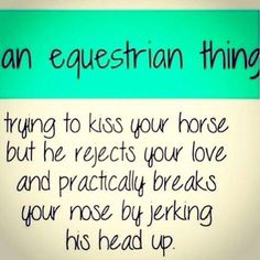 Trying to kiss your horse...