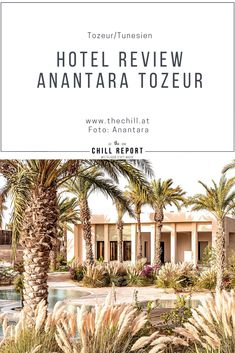 Hotel Review Anantara Tozeur, Tunesien - The Chill Report Hotels, Das Hotel, Hotel Reviews, Oasis, Africa, Mansions, House Styles, Amazing, Luxury