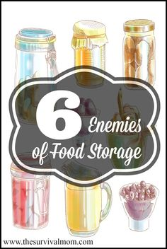 Food storage is an investment and should be treated as one. Keep it at its freshest by avoiding these 6 enemies of food storage. | www.TheSurvivalMom.com