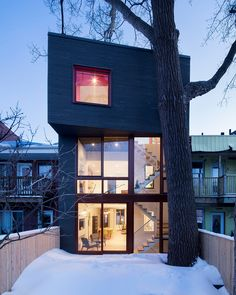 the extension, which occupies the intermediate area between the property's back yard and existing living quarters, has been articulated around a large poplar tree.