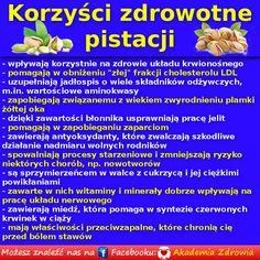 Korzyści zdrowotne pistacji - Zdrowe poradniki