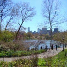 Central park feeling