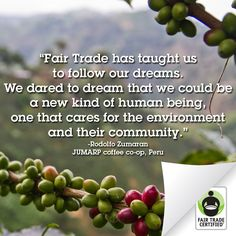 What has Fair Trade taught you?