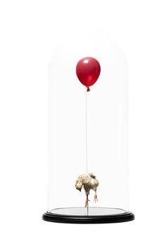 Still Birth (red) – Polly Morgan