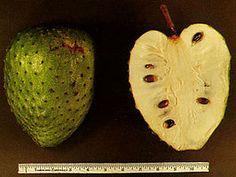 Zuurzak (vrucht) http://nl.wikipedia.org/wiki/Zuurzak