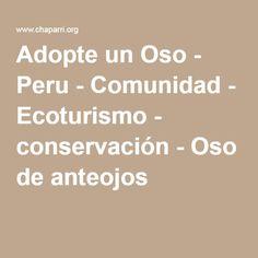 Adopte un Oso - Peru - Comunidad - Ecoturismo - conservación - Oso de anteojos
