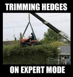 Those are some serious hedges.