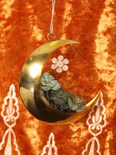 Restocked - the Golden Moon Ornament 🌙 Great for holiday decor or a fun planter! Container Plants, Container Gardening, Indoor Gardening, Spook Houses, Gypsy Warrior, Gypsy Decor, Build Your Dream Home, My Secret Garden, Bedroom Themes