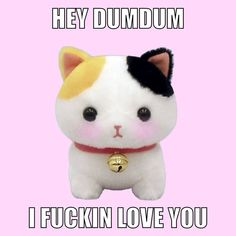Baby Memes, Dankest Memes, Couple Memes, Current Mood Meme, Snapchat Stickers, Cute Love Memes, My Sun And Stars, I Love Girls, Wholesome Memes