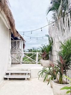 Tropical Paradise, Coastal Living, Tulum, Bali, Fashion Photography, Photo And Video, Outdoor Decor, Instagram, Style