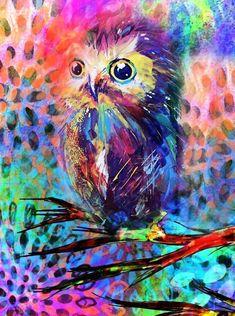 colorful owl love it! Owl Art, Bird Art, Illustrator, Owl Pictures, 3d Fantasy, Wise Owl, Arte Pop, Art Plastique, Spirit Animal