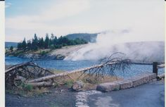 Yellowstone, 2000. Geo-thermally heated water flowing into the river.