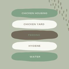 We hope that after this week you are feeling more confident with the idea of owning your own chickens and ensuring they are kept happy and healthy as part of your family. If you are ready to begin your chicken journey, head over to our shop where we have chicken feeders and water troughs readily available! Beef Jerky Dehydrator, Automatic Chicken Feeder, Farm Shed, Water Trough, Chicken Feeders, Farm Fun, Stainless Steel 304, Confident, Garden Tools