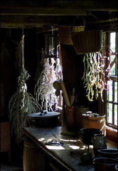Herbs:  Drying #herbs.