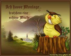 Montag Gästebuch Bilder - montag_gbbild_56.jpg - GB Pics