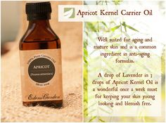 Apricot Oil for skin care!