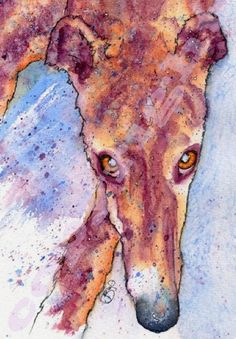 Josie P | WATERCOLOR | Greyhound